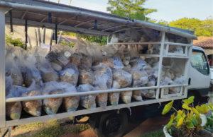 emergencia-sanitaria-limpio-sur-entrega-kits-a-familias-de-limpio